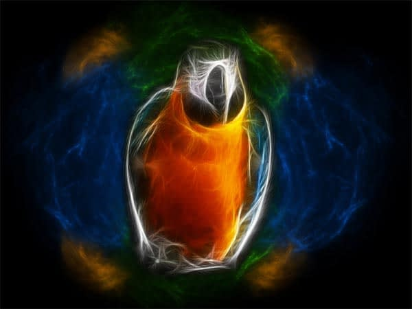 Parrot Light colorful wallpaper By Firejerm